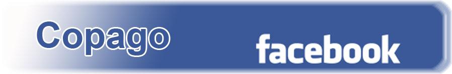 Copago en Facebook